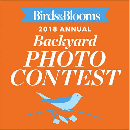 Birds And Blooms Backyard Photo Contest 2018